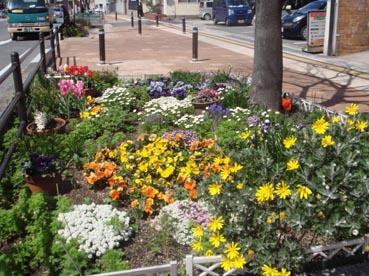 歩道の花壇