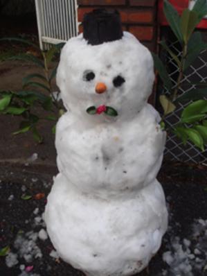 Silkhat_snowman